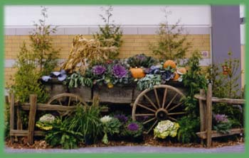 Wagon, Fences, Fall Veggies